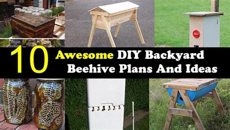 can you have a beehive in your backyard 10 awesome diy backyard beehive plans and ideas home and gardening ideas