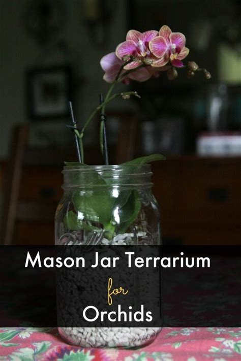 themes for jar phone 1000 images about diy craft ideas on pinterest for