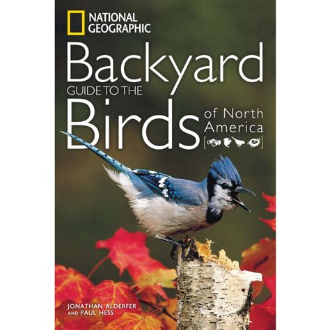 Backyard Birds Of America by 2017 Backyard Birds National Geographic Wall Calendar