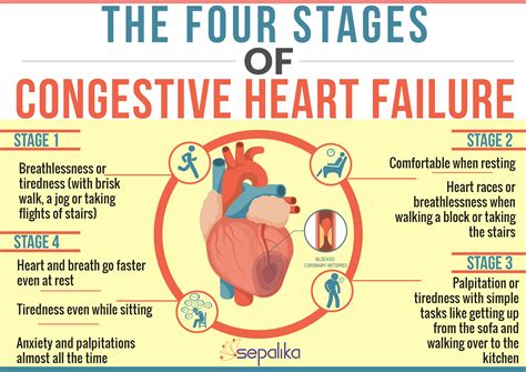 congestive failure congestive failure chf symptoms stages expectancy