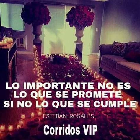 imagenes buchonas vip 78 images about corridos vip on pinterest keep calm