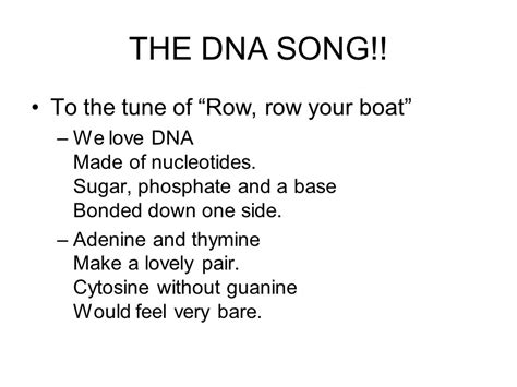 dna song lyrics row row row your boat opener what controls all cell activities and determines