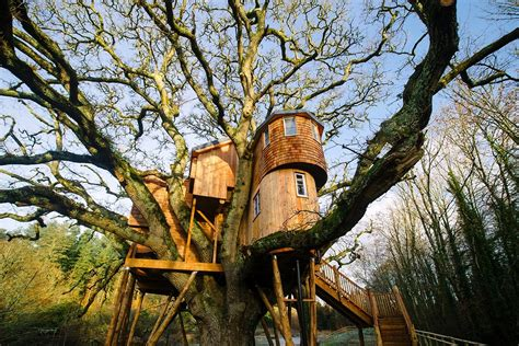best treehouses the uk s 6 best treehouses the independent