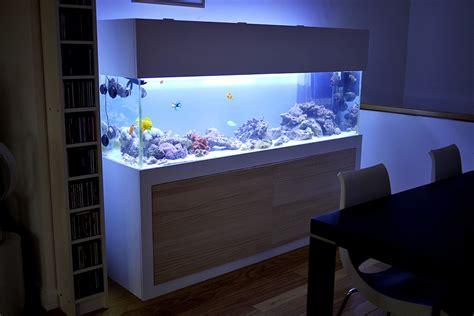 Aquarium Fish Model Cumi 13 Liter white and wood paneling combo aquarium hobby