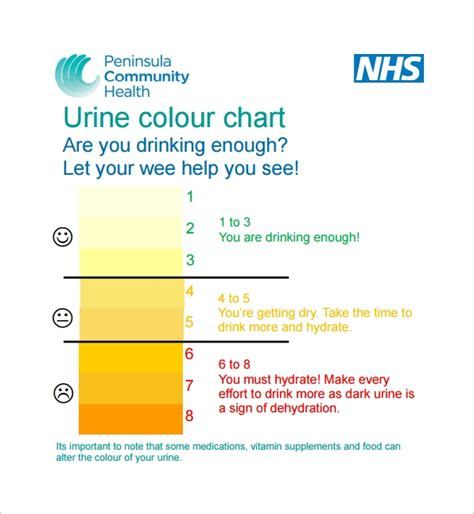 what color is healthy urine 9 sle urine color charts pdf