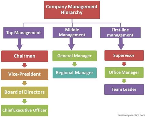 company management hierarchy management hierarchy it is business and manners