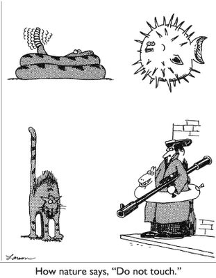 """how nature says, """"do not touch"""" – a classic far side comic"""