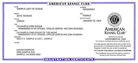 akc puppy registration registration certificate american kennel club