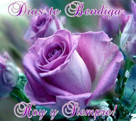 imagenes de rosas moradas con frases postales de rosas para novia ramos de flores para cumplea 241 os