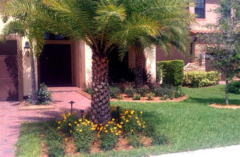 landscape lighting miami miami landscape lighting design installation residential commercial