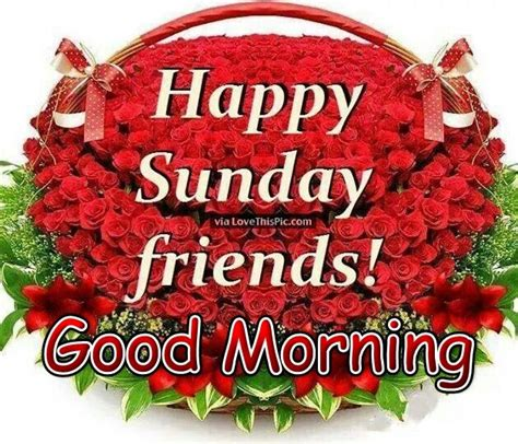 imagenes good morning happy sunday good morning happy sunday friends pictures photos and