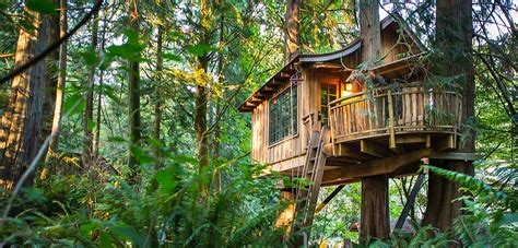 tree houses around the world the best tree house hotels from around the world