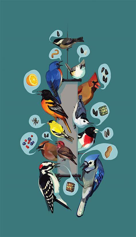 Most Common Backyard Birds - common feeder birds feederwatch