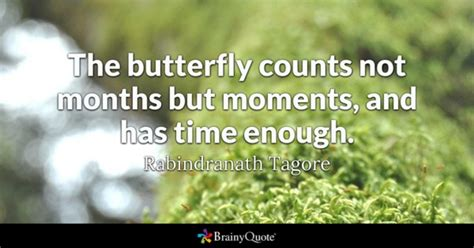 those happy moments how a one year experiment led to lasting happiness books butterfly quotes brainyquote