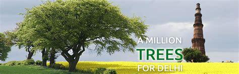 Garden Nursery Bijwasan Treedelhi A Million Trees For Delhi
