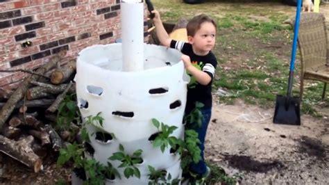 how to build a vertical garden using a 55 gallon drum or