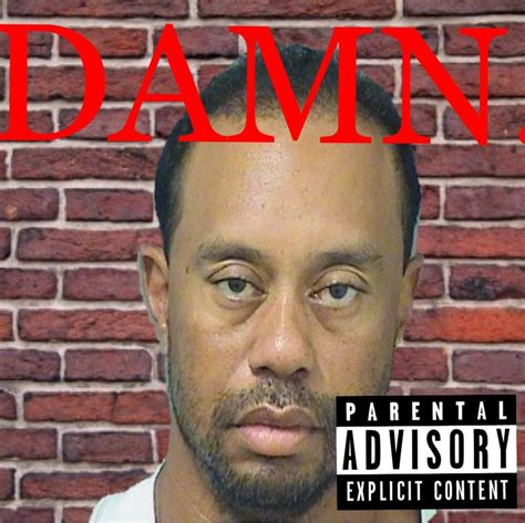 damn meme damn by tiger woods memes