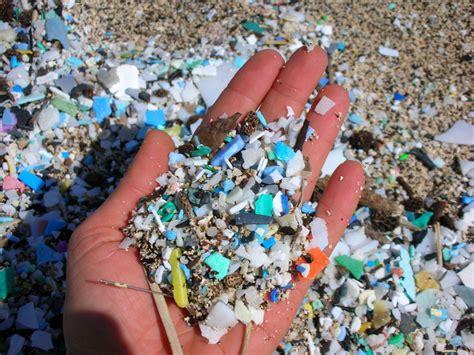 Cincin Penakan Mikro plastik mikro ancaman hidupan laut majalahsains