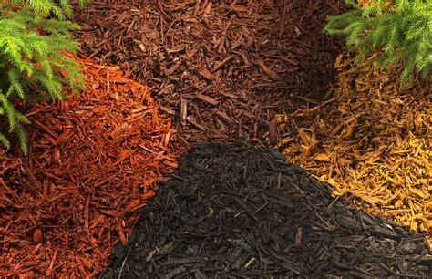 Garden Decorative Bark by Finish Your Garden With Decorative Bark The Garden
