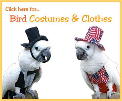 Bath Handheld Shower perch factory bird shoulder capes diapers costumes