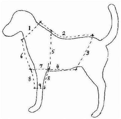 pattern for dog jersey this site has everything you can make for dogs not just
