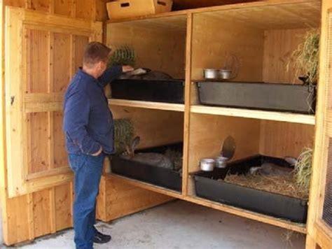 come fare una gabbia per conigli come costruire una gabbia per conigli build daily