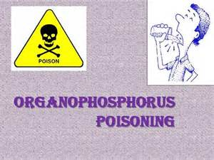 organophosphorus poisoning authorstream