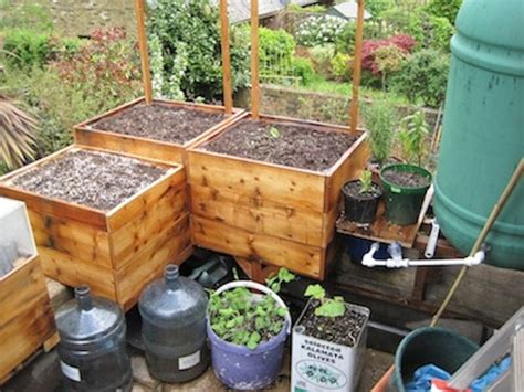 how to build container garden how to make a genuinely self watering container garden