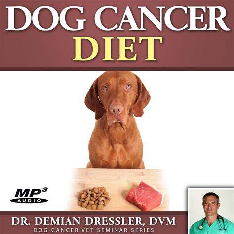 cancer diet for dogs cancer diet mp3 cancer store