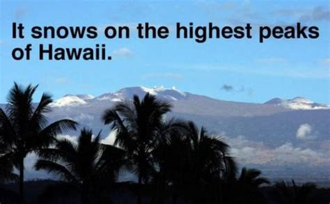 interesting facts about the beautiful state of hawaii 20