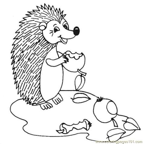 hedgehog coloring book for adults animal adults coloring book books coloring pages hedgehog animals gt hedgehogs free