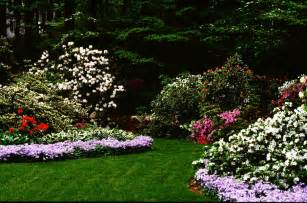 middle tn backyard landscaping