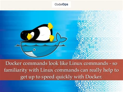docker tutorial for linux docker by exle basics