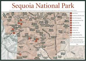 sequoia national park california map sequoia national park photos