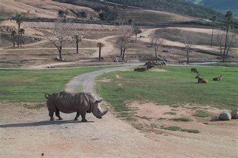 map san diego zoo safari park san diego zoo safari park escondido ca california beaches