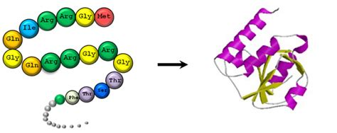 Pasaran Whey Protein tips pemilihan protein tinggi kualiti terbaik di pasaran