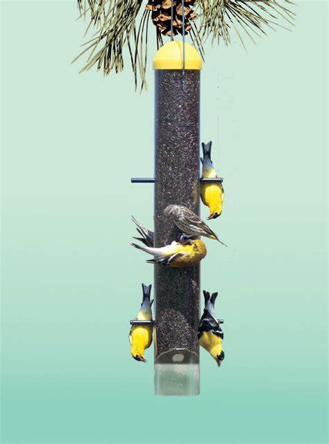 Finch Bird Feeders Pet Finch Bird Feeder