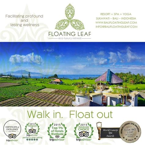 Best Detox Retreat Usa by 1210 Best Images About Floating Leaf Eco Luxury Retreat