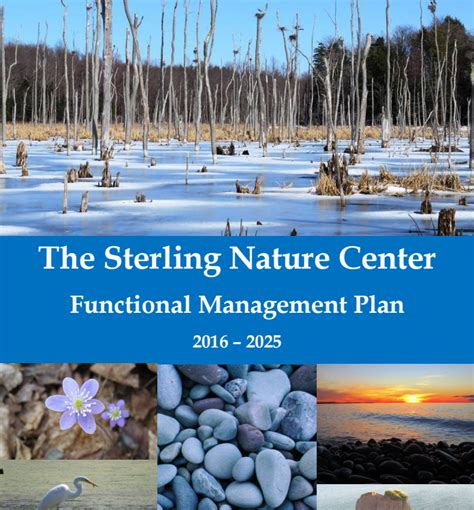 cornell design students consider sterling nature center