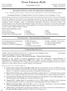technical resume template sales and technical support resume