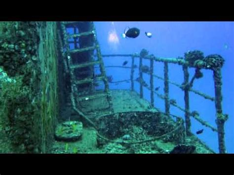 Adrienne Rich Diving Into The Wreck Essay by Diving Into The Wreck Adrienne Rich