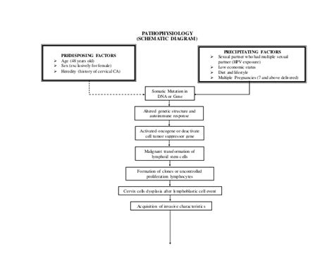 how to make a pathophysiology diagram how to make a schematic diagram pathophysiology repair