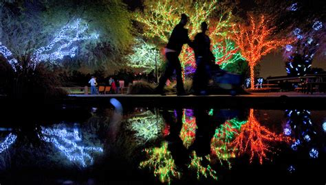 phoenix zoo christmas lights places in phoenix to get your twinkle on rentcafe rental