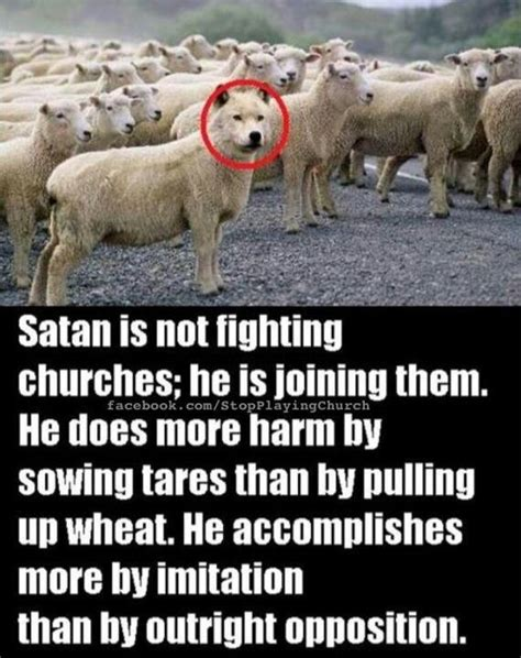 he was a wolf in sheep s clothing 2 volume 2 books matthew 7 15 king version kjv 15 beware of false