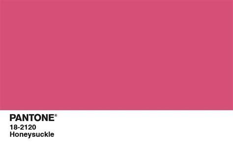 pink pantone december 2010 lmt photography design