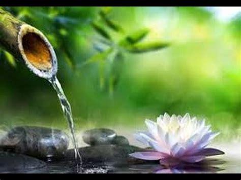 musica da rilassante musica e suono dell acqua rilassante ideale per massaggio