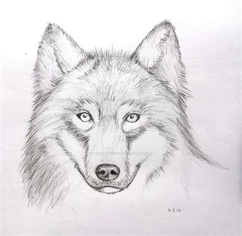 photos anime wolf drawings in pencil drawing art gallery