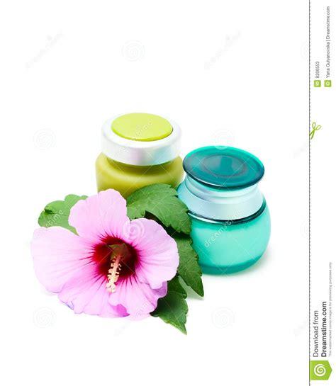 vasi cosmetici vasi per crema cosmetica fotografie stock immagine 8206553