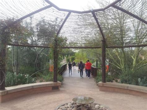 Restaurants Near Desert Botanical Garden The Entrance To The Desert Garden Picture Of Desert Botanical Garden Tripadvisor
