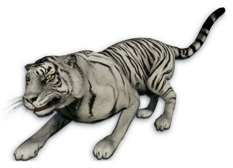 Gamis Black White Dannis No 5 white tiger far cry wiki fandom powered by wikia